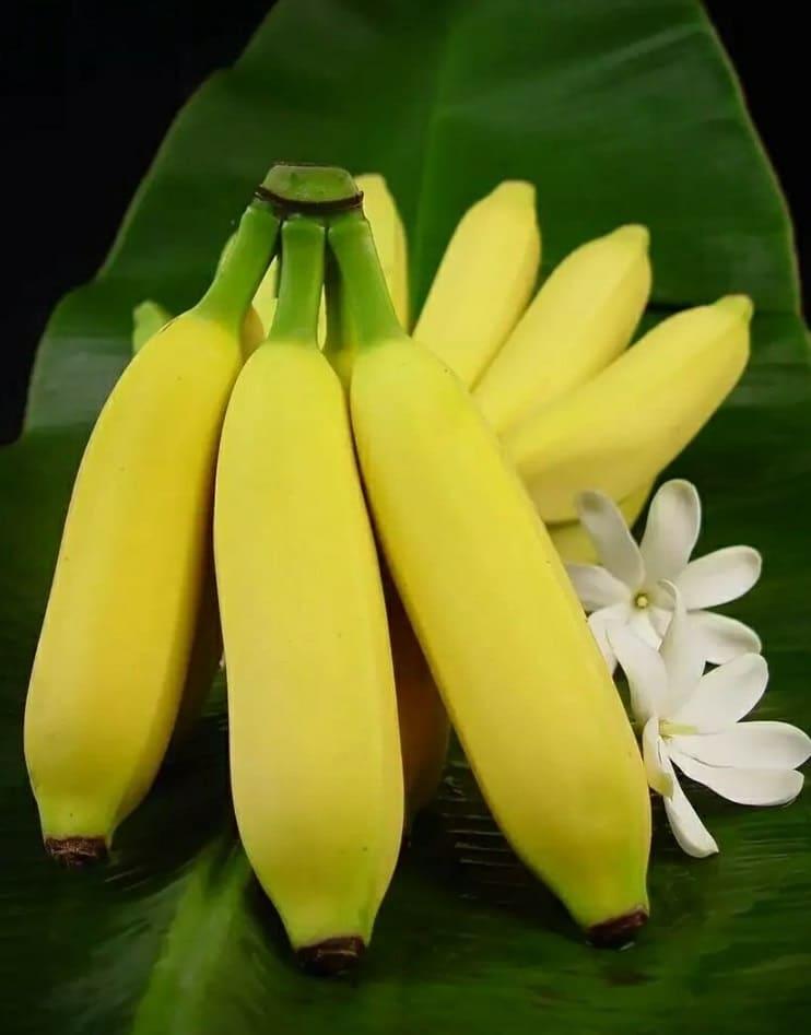 Цена бананов