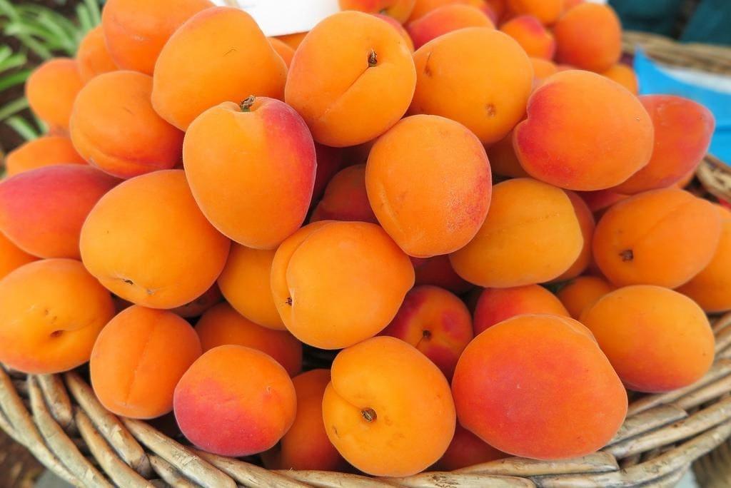 Цена абрикосов за 1 кг