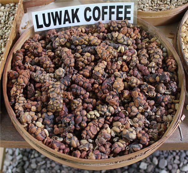 Сколько стоит кофе лювак