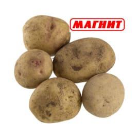 Сколько стоит картошка в Магните