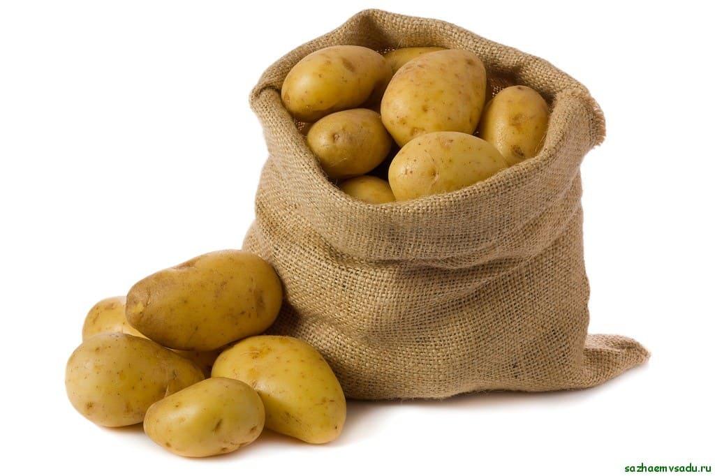 Сколько стоит мешок картошки