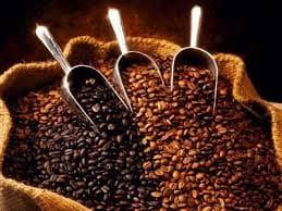 Цена кофе арабика