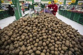 Цена картошки в Магните