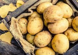 Стоимость килограмма картошки