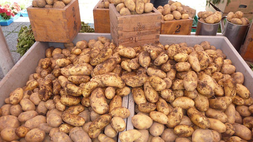 Сколько стоит картошка на рынке