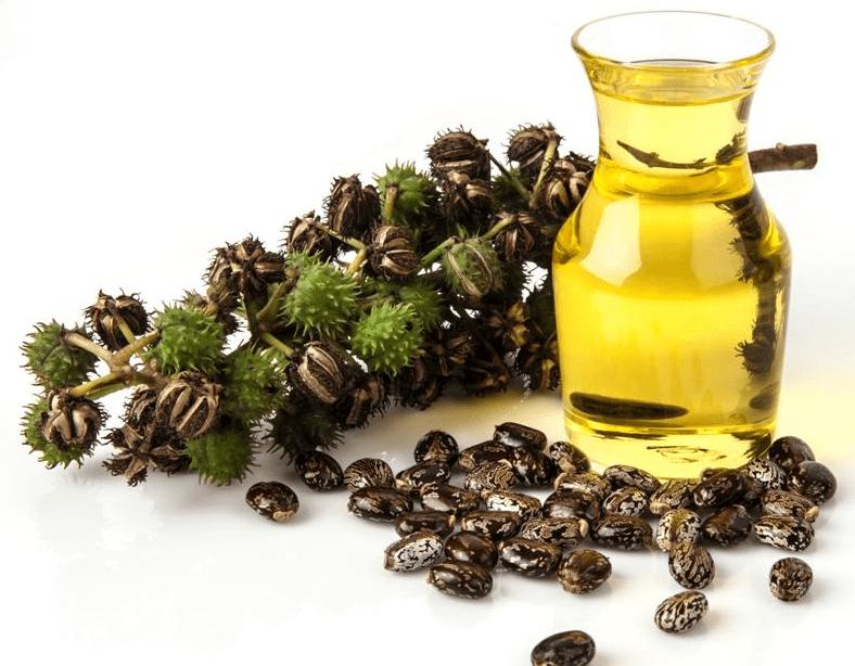 Сколько стоит касторового масла