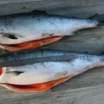 Сколько стоит рыба кижуч?