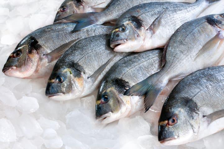 Сколько стоит свежая рыба