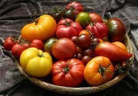 Стоимость помидоров