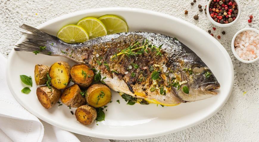 Стоимость рыбы дорадо