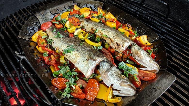 Стоимость рыбы сибас